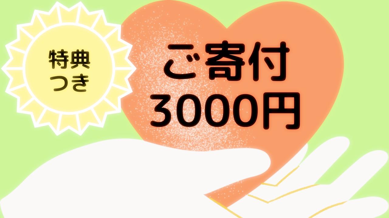 ご寄付3000円
